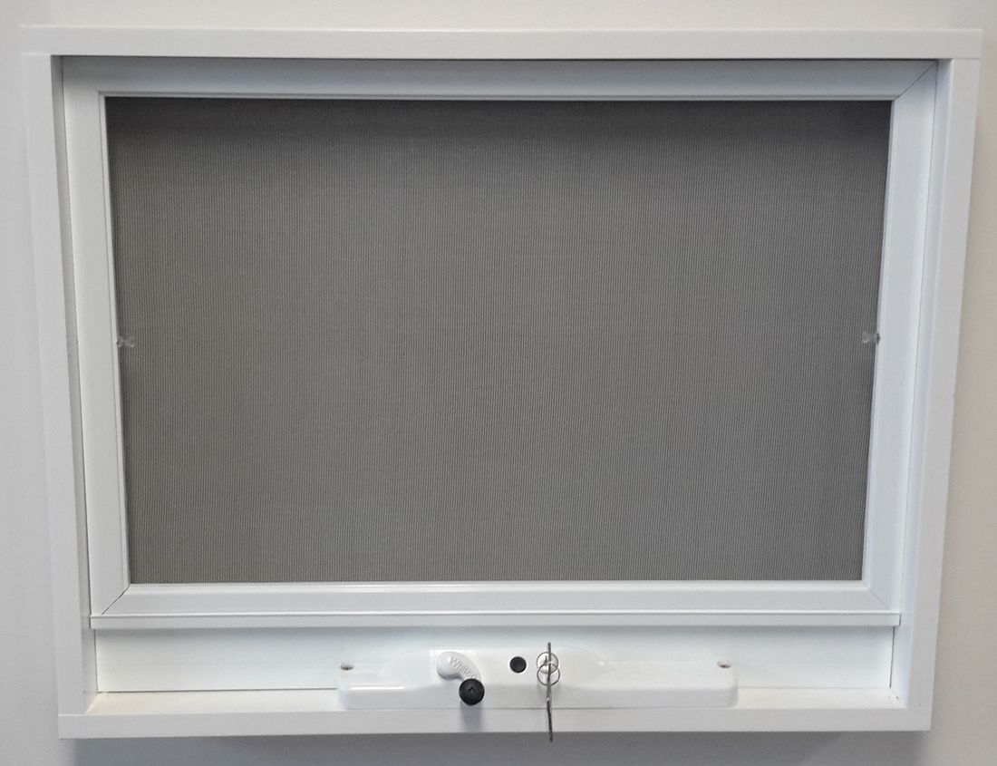 Flyscreen Windows